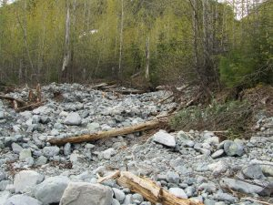 Debris flow in mountainous terrain British Columbia, Canada