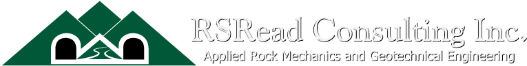 RSRead Consulting Inc